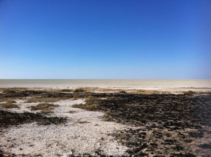 Etosha's Salt Flats