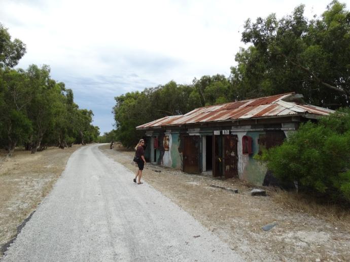 Forgotten Shelter